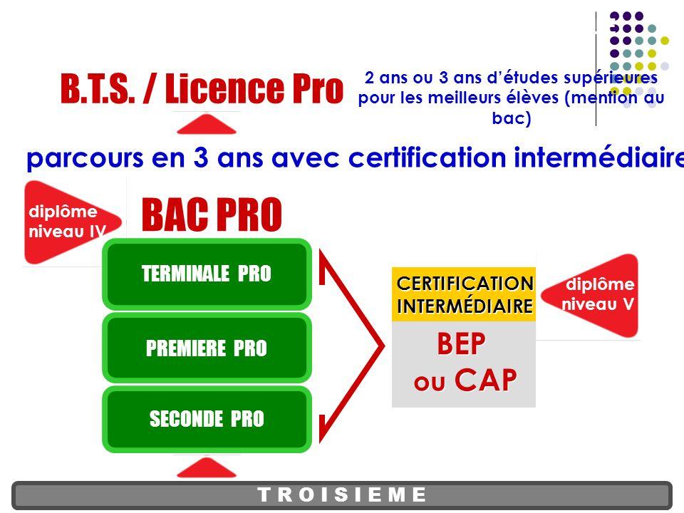 BAC PRO B.T.S. / Licence Pro PARCOURS DE LA VOIE PROFESSIONNELLE BEP