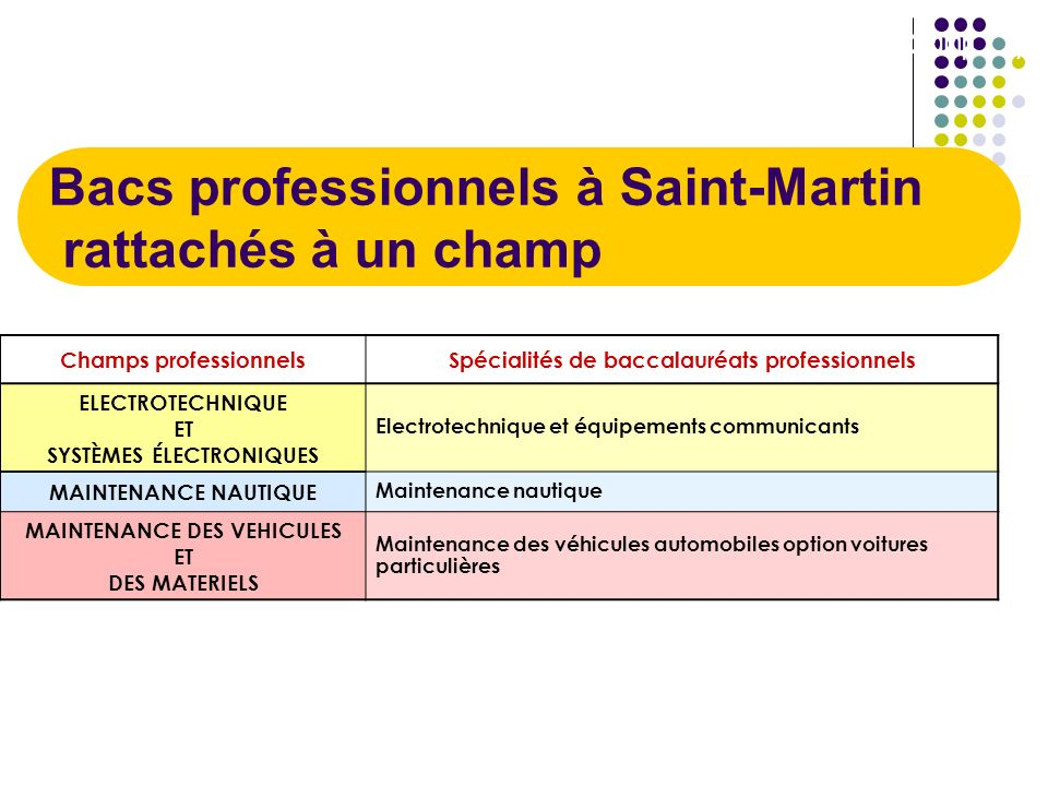 Baccalauréats professionnels (en Guadeloupe) non rattachés à un champ