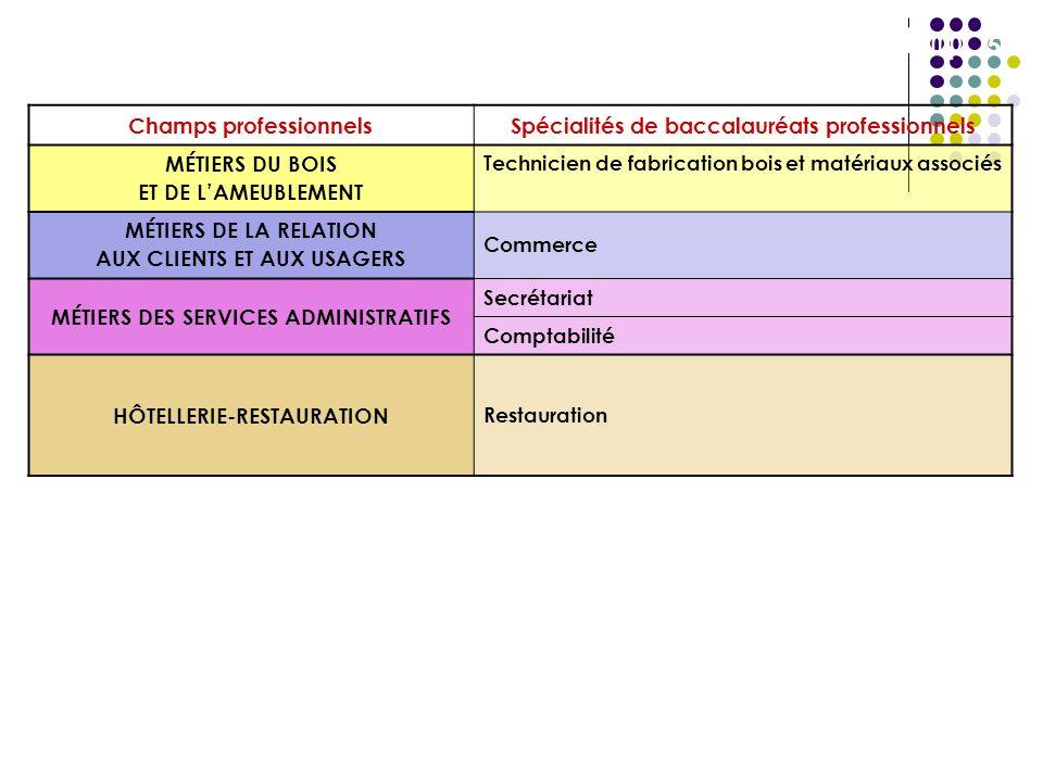 Baccalauréats professionnels (en Guadeloupe) rattachés à un champ