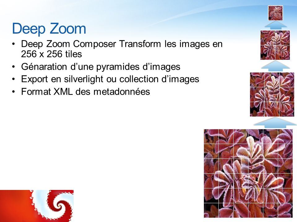 Deep Zoom Deep Zoom Composer Transform les images en 256 x 256 tiles