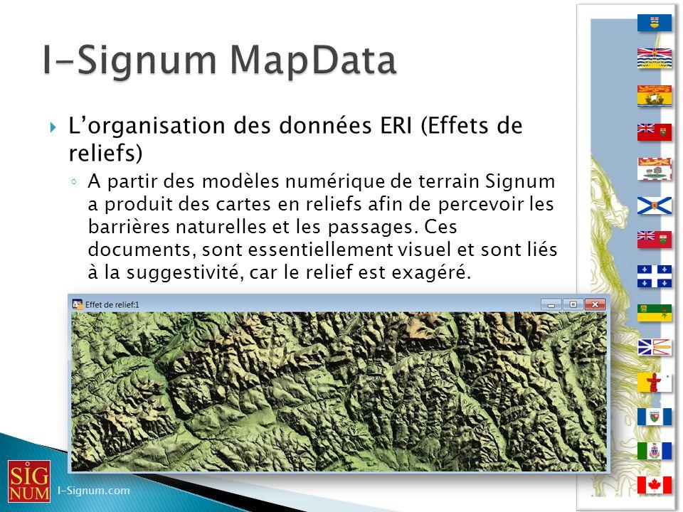 I-Signum MapData L'organisation des données ERI (Effets de reliefs)