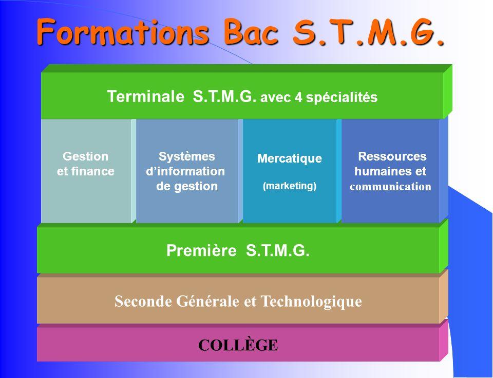 Formations Bac S.T.M.G. Terminale S.T.M.G. avec 4 spécialités