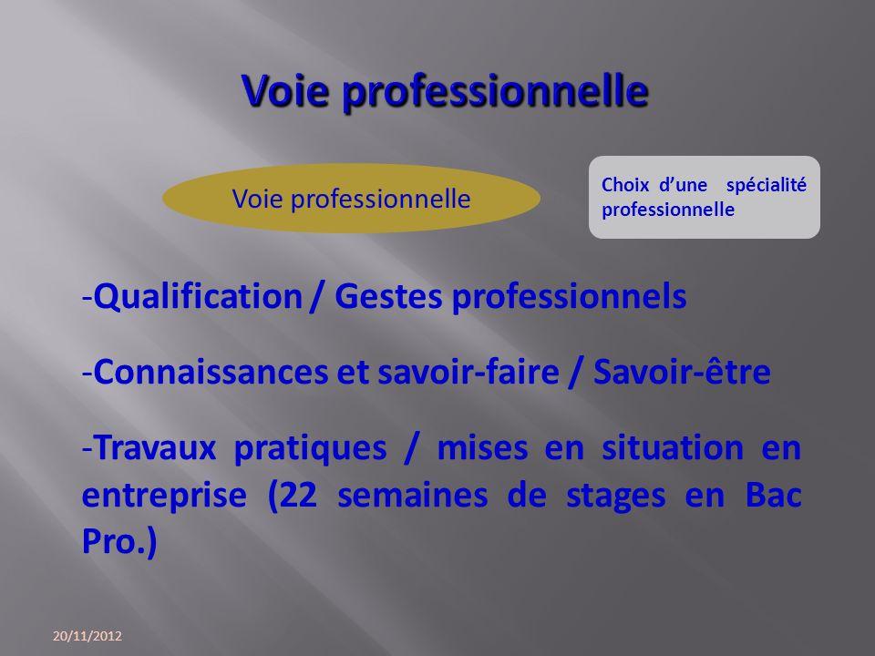 Voie professionnelle Qualification / Gestes professionnels