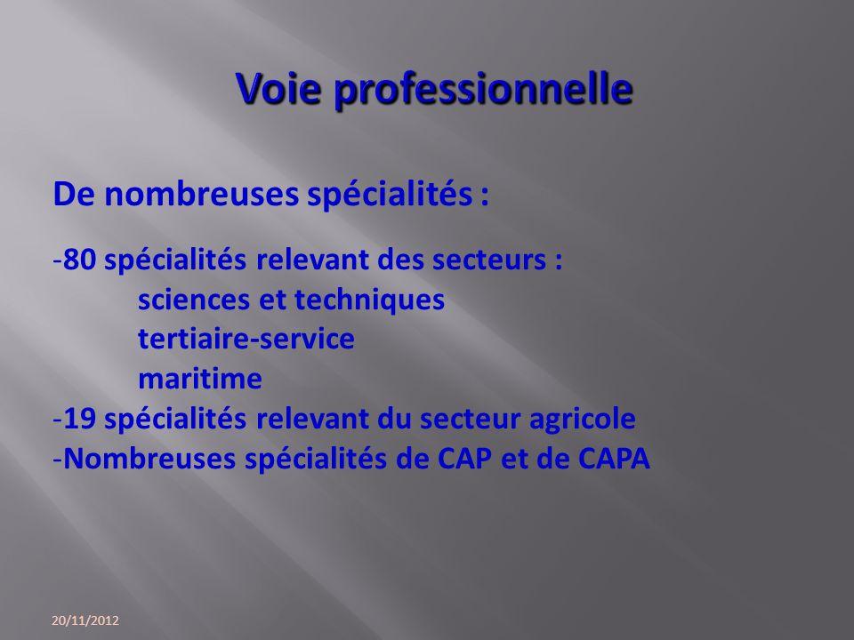 Voie professionnelle De nombreuses spécialités :