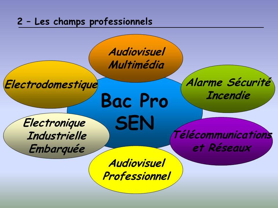 Bac Pro SEN Audiovisuel Multimédia Electrodomestique Alarme Sécurité