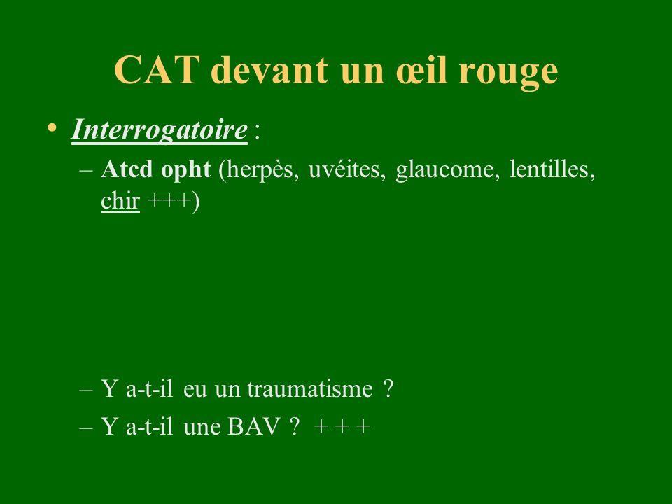 CAT devant un œil rouge Interrogatoire :