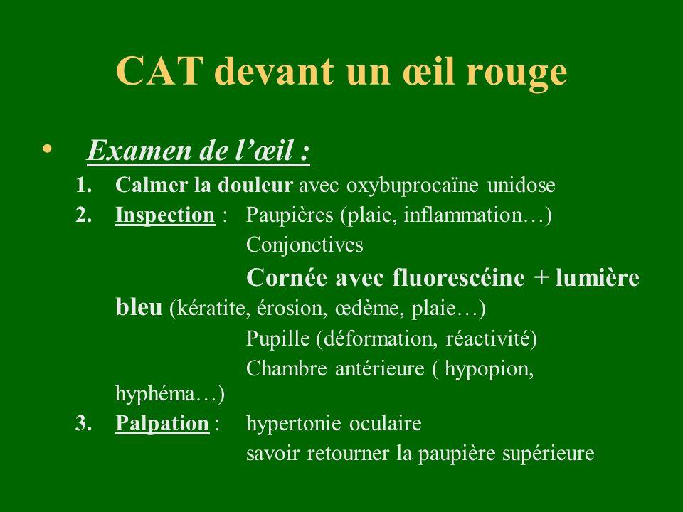 CAT devant un œil rouge Examen de l'œil :