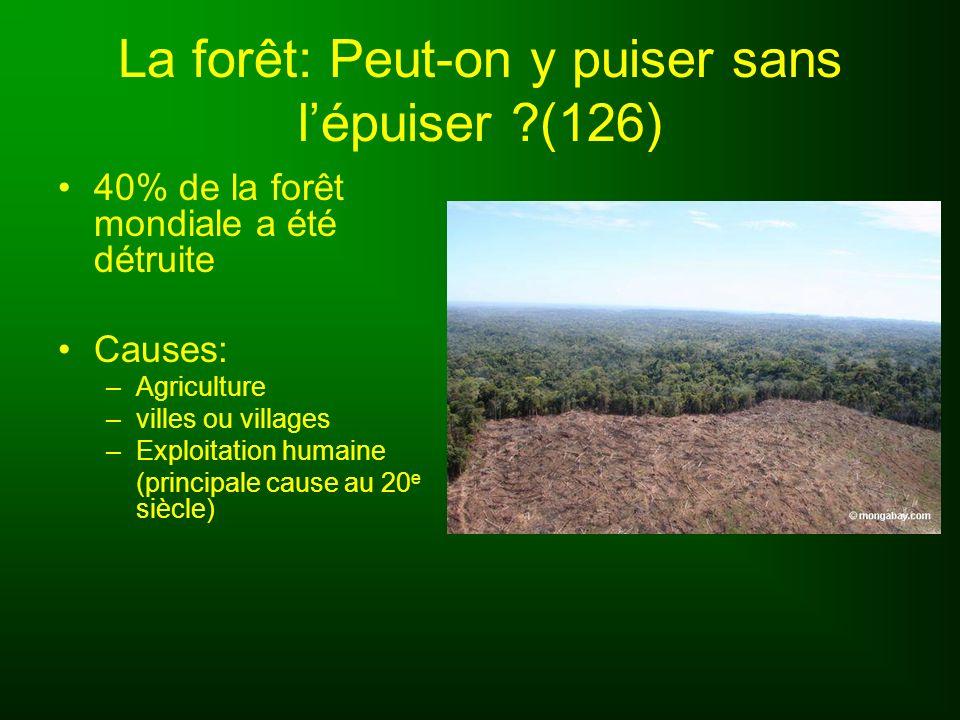 La forêt: Peut-on y puiser sans l'épuiser (126)