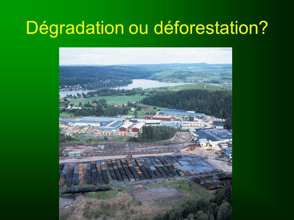 Dégradation ou déforestation