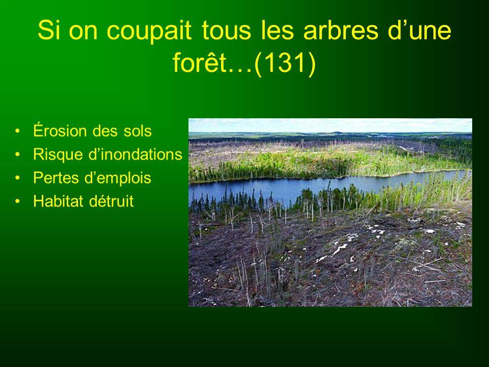 Si on coupait tous les arbres d'une forêt…(131)