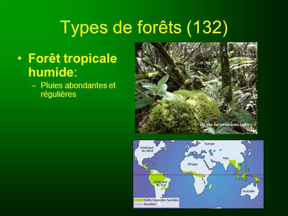 Types de forêts (132) Forêt tropicale humide: