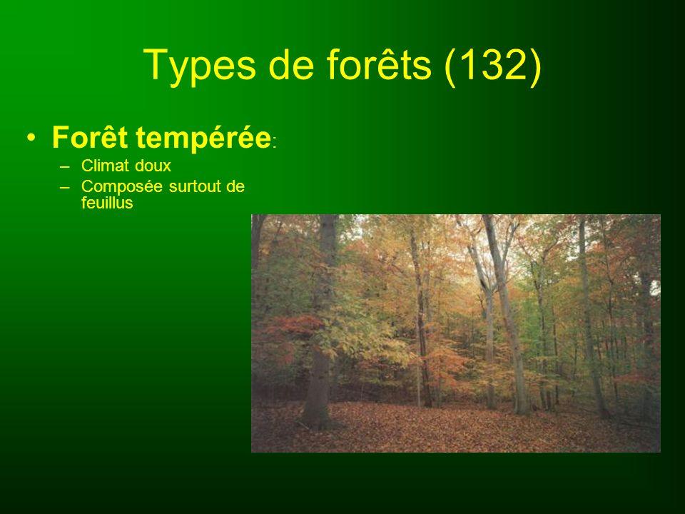 Types de forêts (132) Forêt tempérée: Climat doux