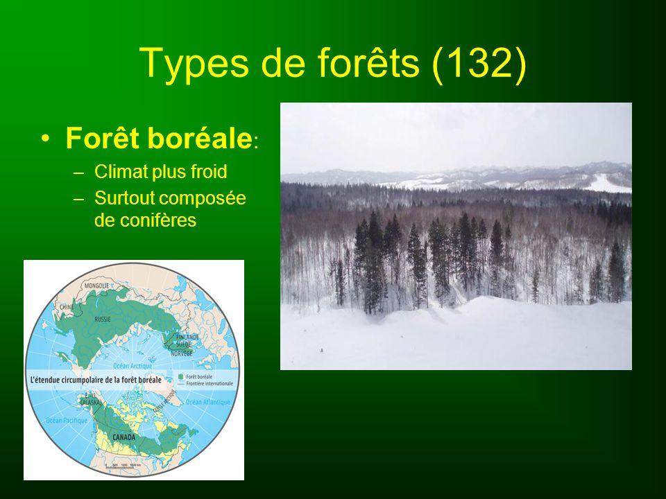 Types de forêts (132) Forêt boréale: Climat plus froid