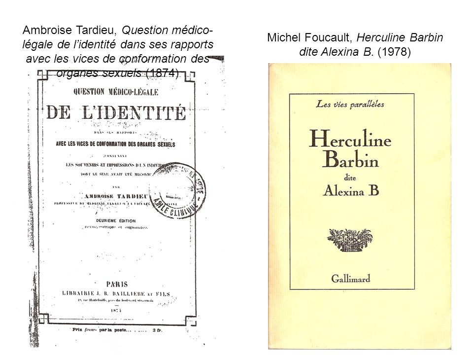 Michel Foucault, Herculine Barbin