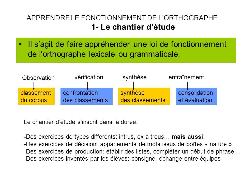 APPRENDRE LE FONCTIONNEMENT DE L'ORTHOGRAPHE 1- Le chantier d'étude