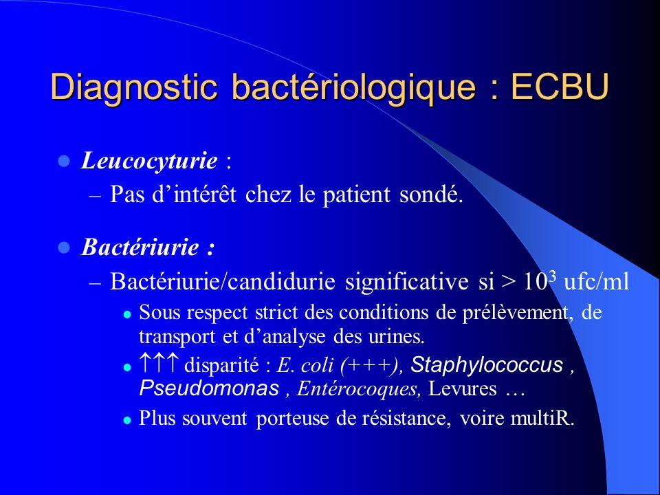 Diagnostic bactériologique : ECBU