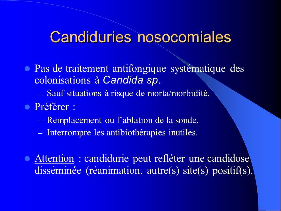 Candiduries nosocomiales