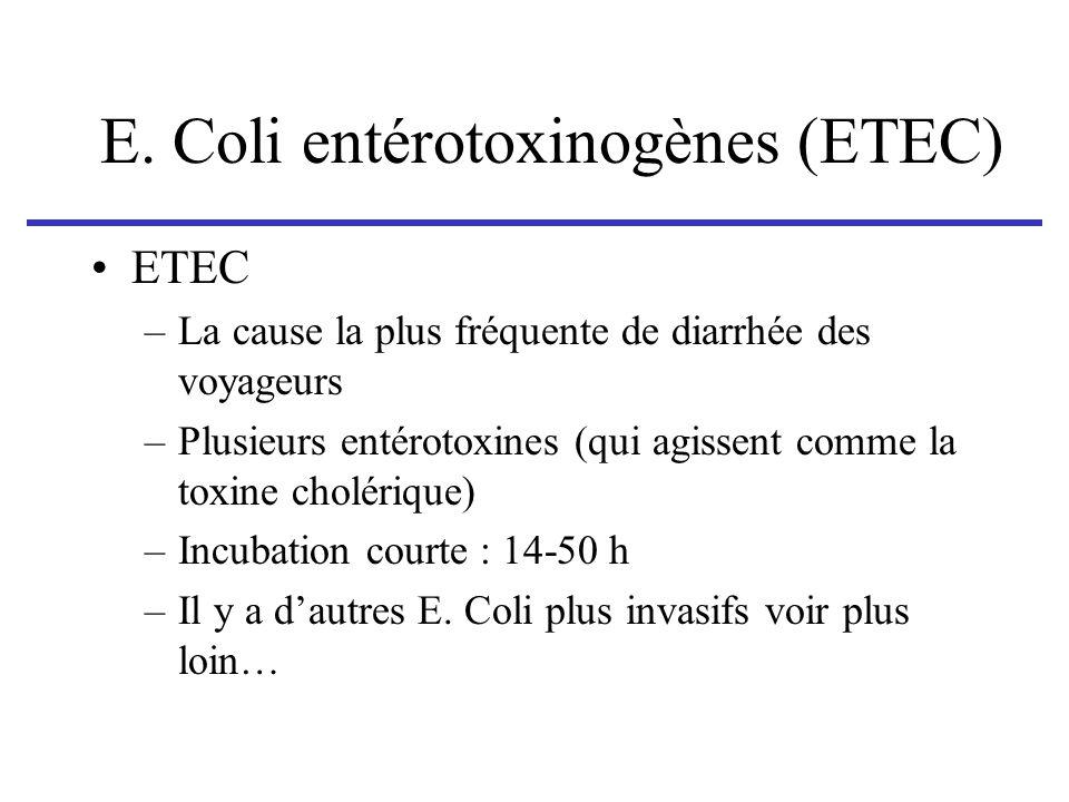 E. Coli entérotoxinogènes (ETEC)