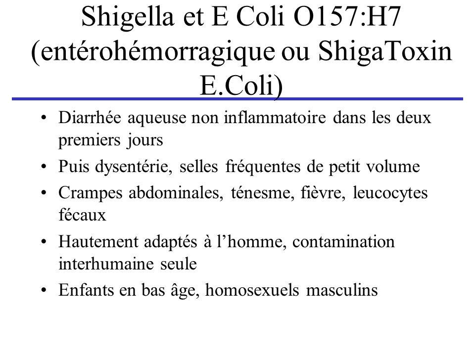 Shigella et E Coli O157:H7 (entérohémorragique ou ShigaToxin E.Coli)
