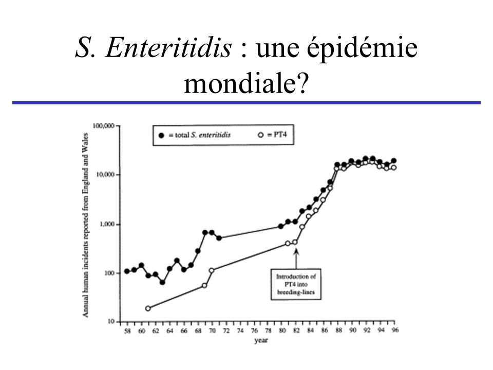 S. Enteritidis : une épidémie mondiale