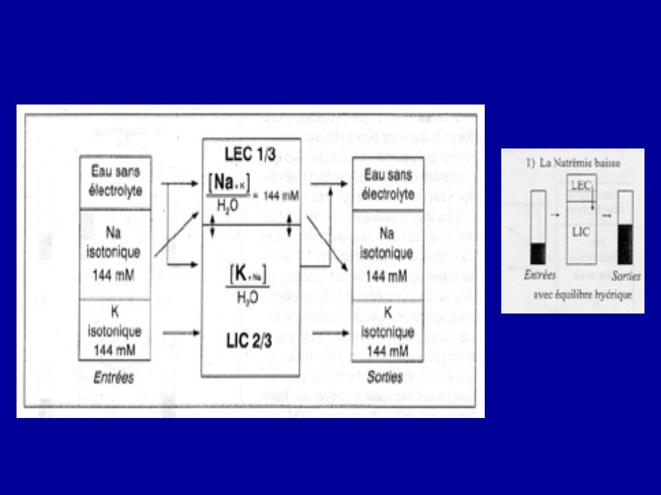 Les 2 niveaux de l'équilibre sont représentés: 1) l'interface LEC:LIC, où interviennent principalement les mouvements d'eau et la Na-K ATPase 2)les échanges avec l'exterieur: l'eau total des entrées comme celle des sorties correspond à 2 volumes: l'un nécessaire pour que le Na+K soit incorporés et excrétés de façon isotonique, l'autre est le volume sans électrolytes