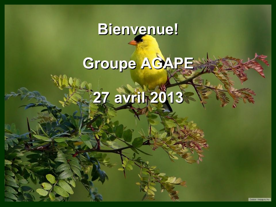 Bienvenue! Groupe AGAPE 27 avril 2013