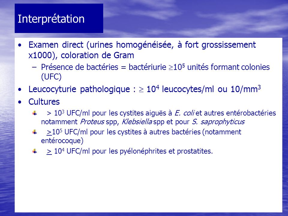 Interprétation Examen direct (urines homogénéisée, à fort grossissement x1000), coloration de Gram.