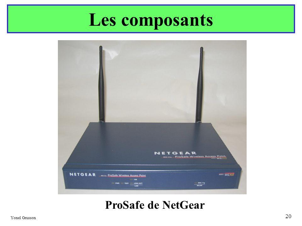 Les composants ProSafe de NetGear Yonel Grusson