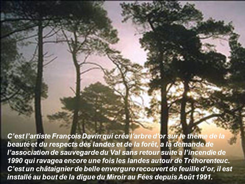 C'est l'artiste François Davin qui créa l arbre d or sur le thème de la beauté et du respects des landes et de la forêt, a la demande de l'association de sauvegarde du Val sans retour suite a l'incendie de 1990 qui ravagea encore une fois les landes autour de Tréhorenteuc.