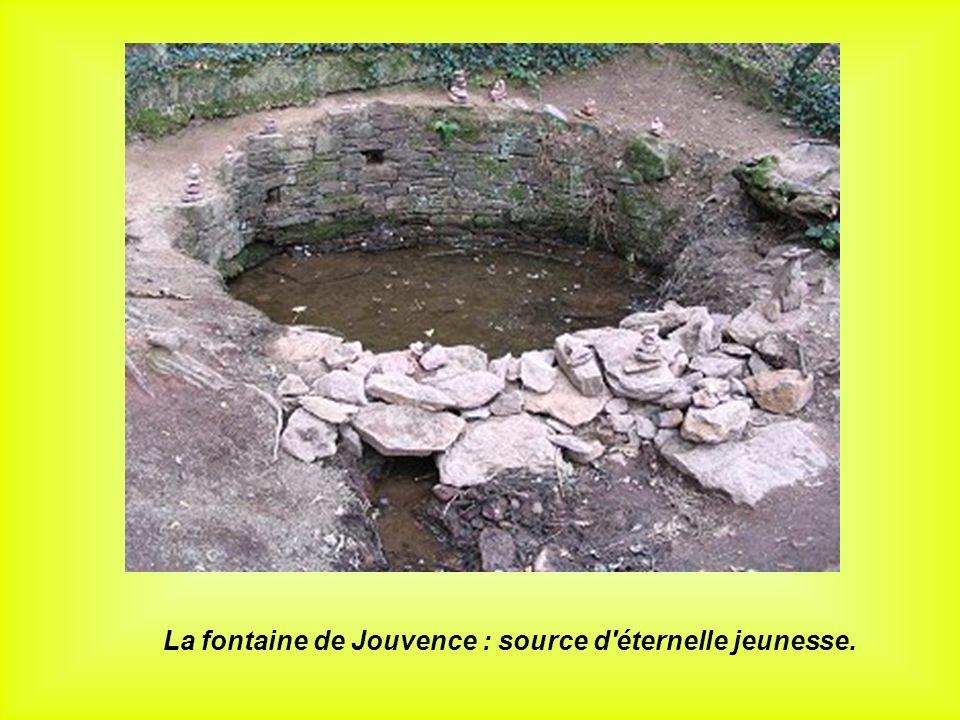 La fontaine de Jouvence : source d éternelle jeunesse.