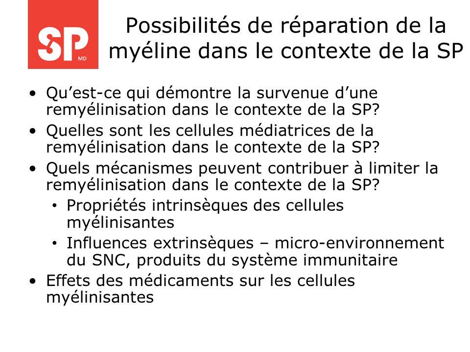 Possibilités de réparation de la myéline dans le contexte de la SP