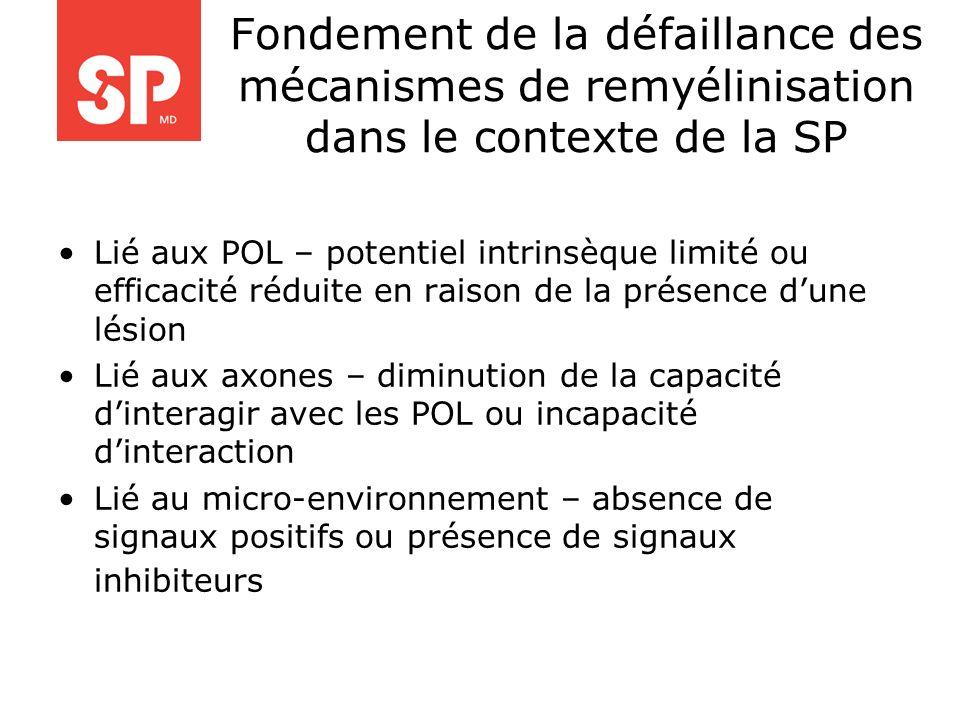 Fondement de la défaillance des mécanismes de remyélinisation dans le contexte de la SP