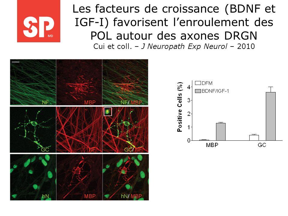 Cui et coll. – J Neuropath Exp Neurol – 2010