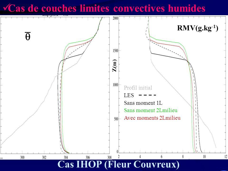 Cas de couches limites convectives humides
