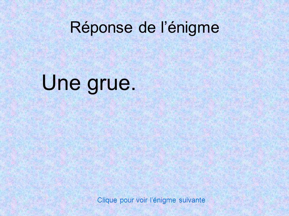 Réponse de l'énigme Une grue. Clique pour voir l'énigme suivante