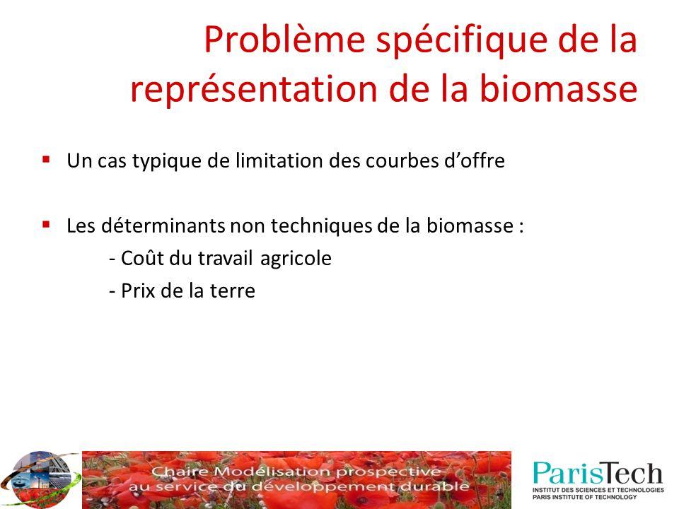 Problème spécifique de la représentation de la biomasse