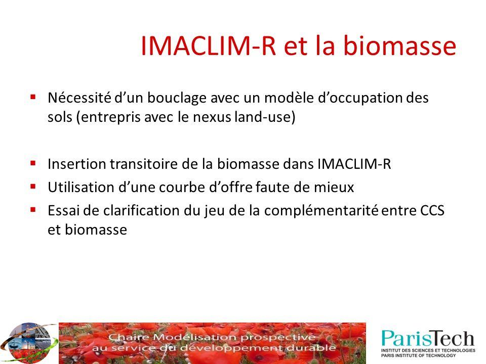 IMACLIM-R et la biomasse