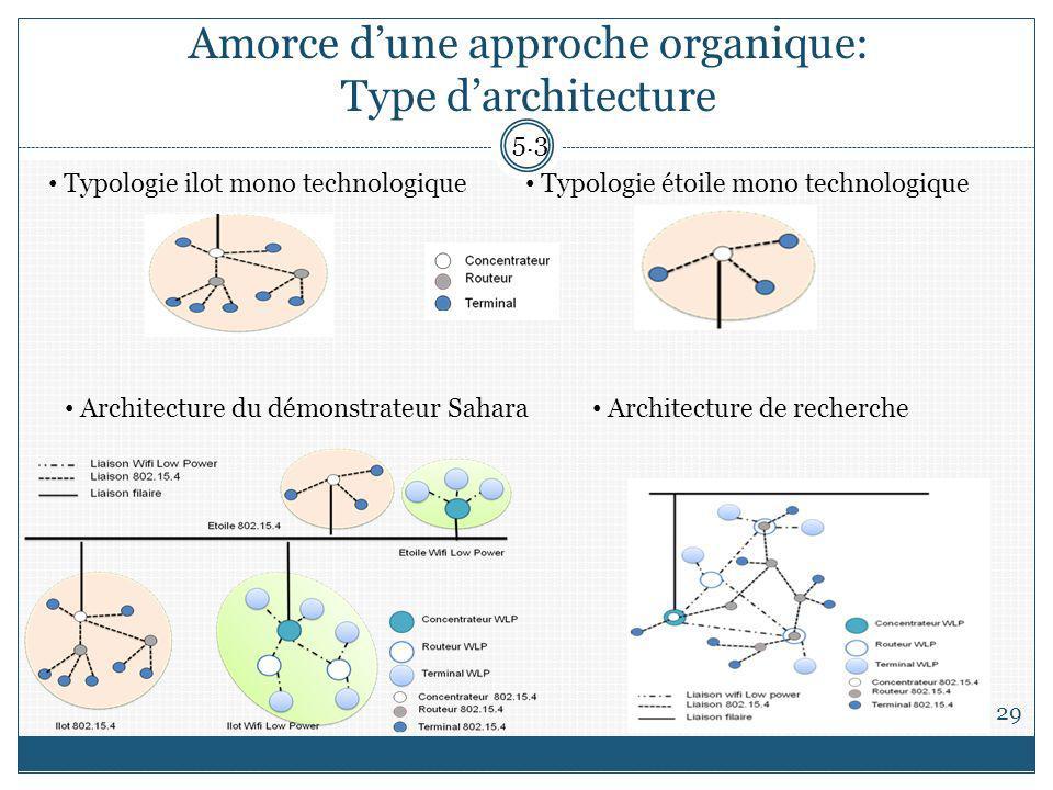 Amorce d'une approche organique: Type d'architecture