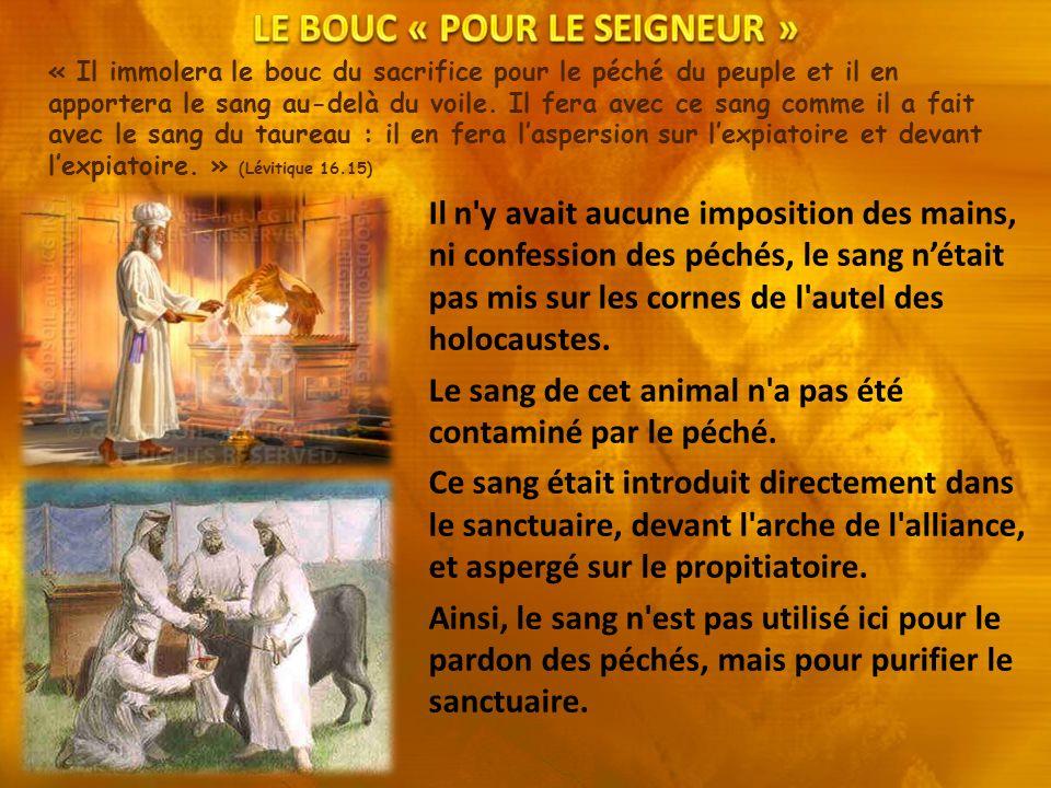 LE BOUC « POUR LE SEIGNEUR »