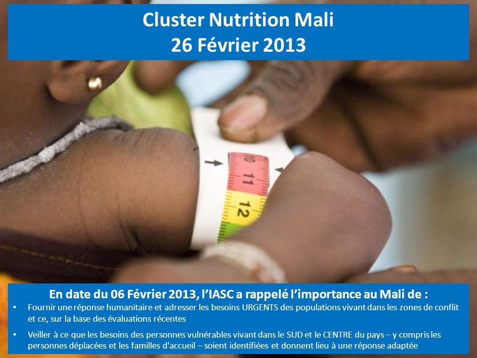 Cluster Nutrition Mali 26 Février 2013