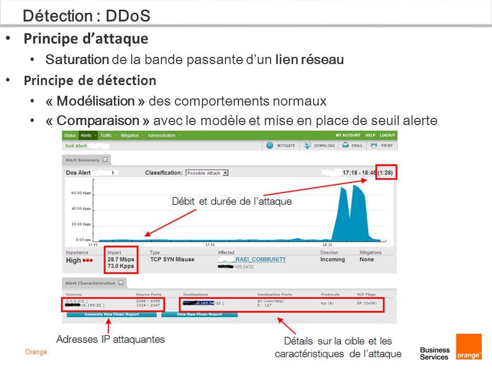 Détection : DDoS Principe d'attaque Principe de détection