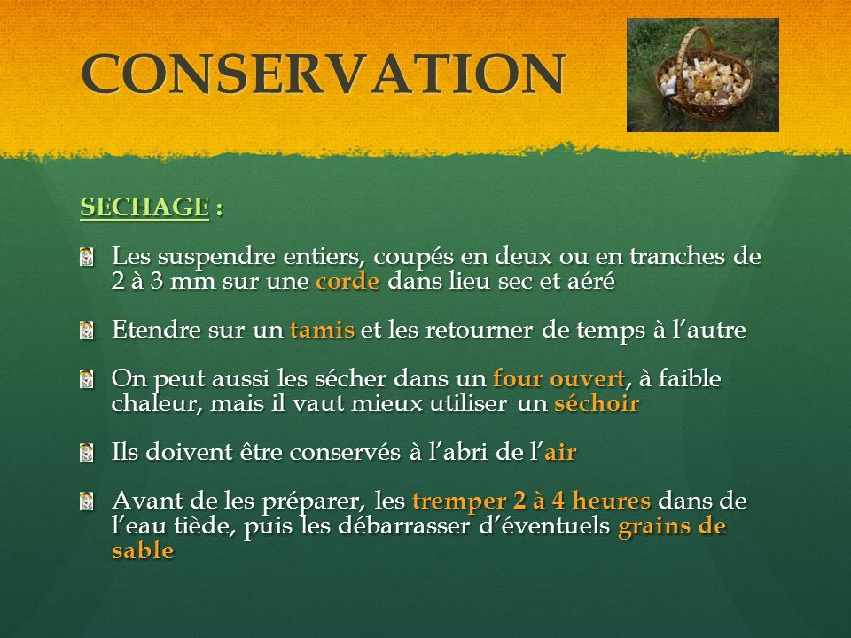 CONSERVATION SECHAGE :