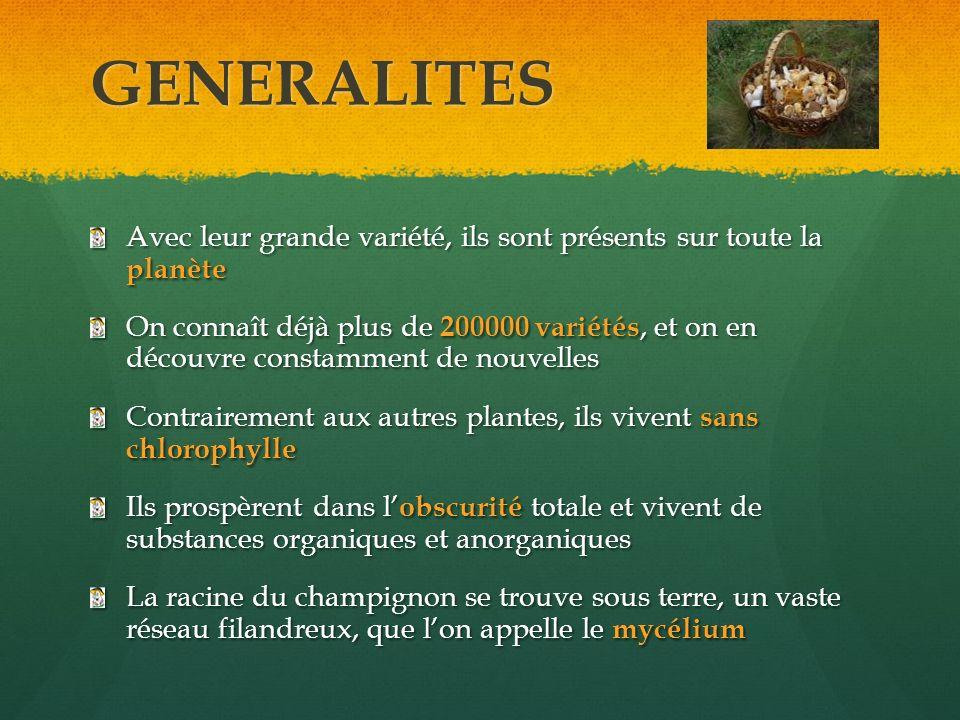 GENERALITES Avec leur grande variété, ils sont présents sur toute la planète.