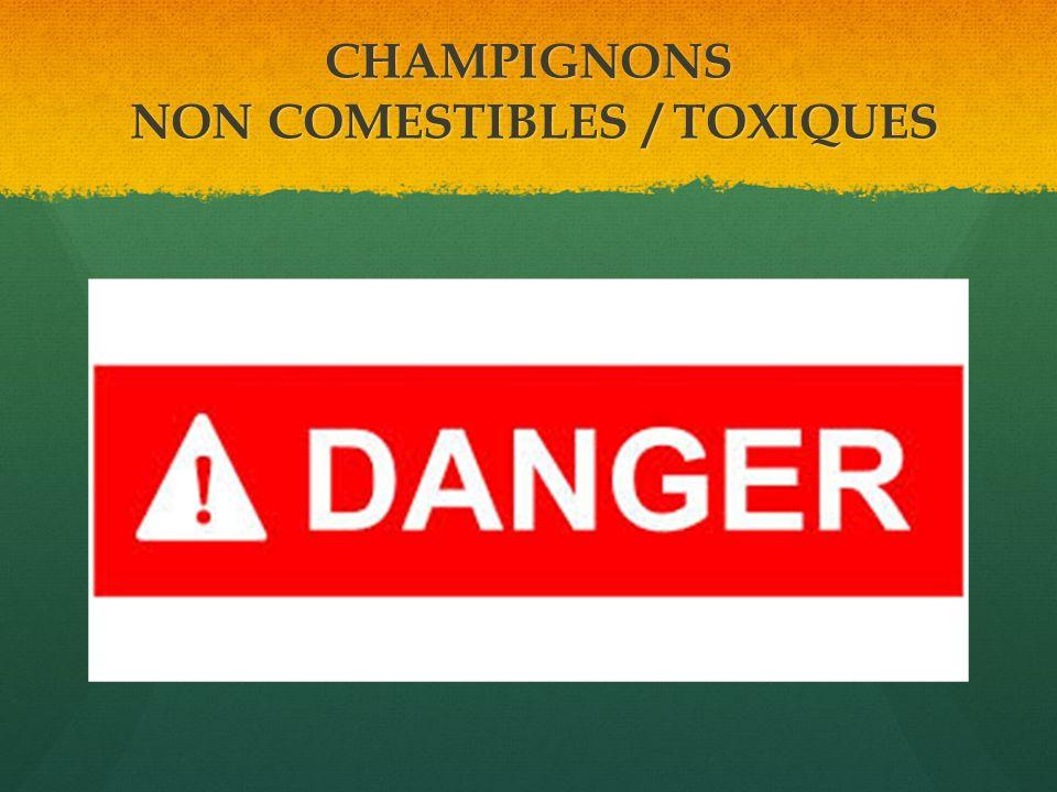 CHAMPIGNONS NON COMESTIBLES / TOXIQUES