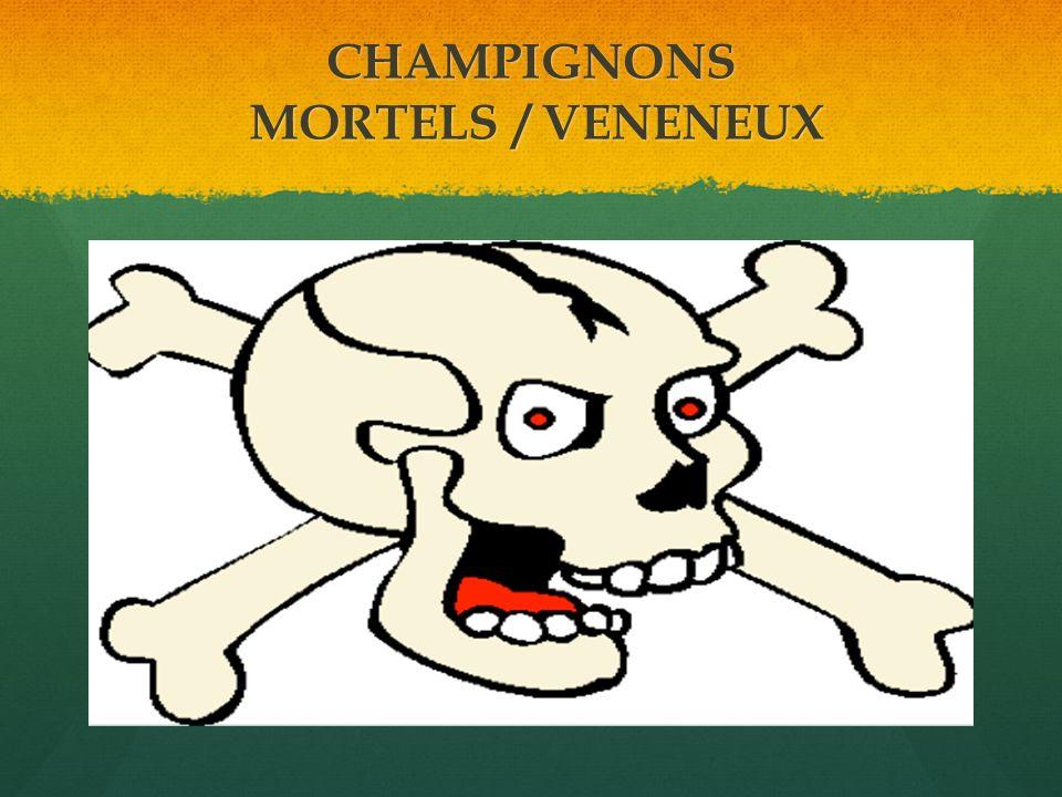 CHAMPIGNONS MORTELS / VENENEUX