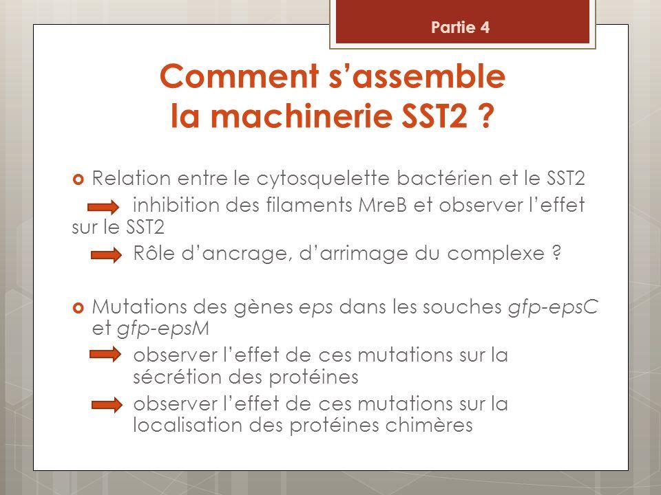 Comment s'assemble la machinerie SST2