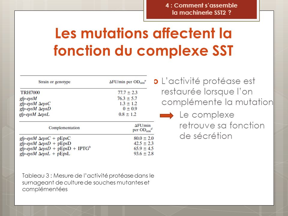 Les mutations affectent la fonction du complexe SST