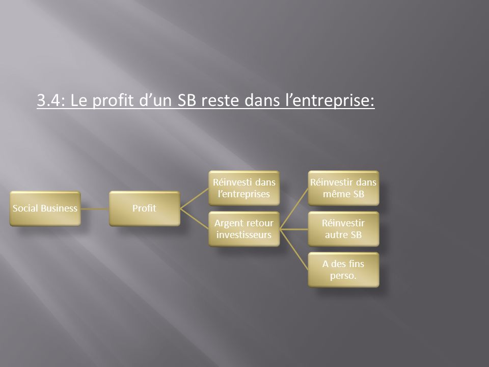 3.4: Le profit d'un SB reste dans l'entreprise: