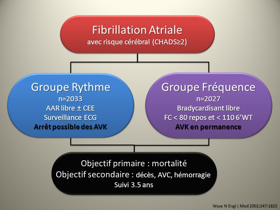 Fibrillation Atriale Groupe Rythme Groupe Fréquence