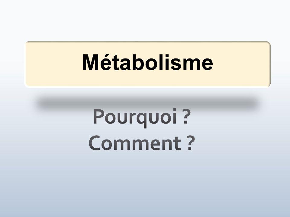 Presentation Information Pourquoi Comment